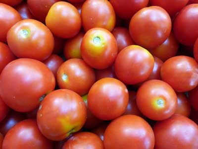 Amy's Sugar Gem tomato. Photo Southern Exposure Seed Exchange