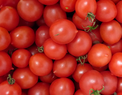 Riesentraube cherry tomatoes. Photo Southern Exposure Seed Exchange