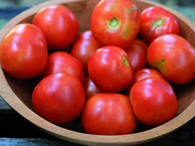 Glacier early tomatoes. photo Southern Exposure Seed Exchange