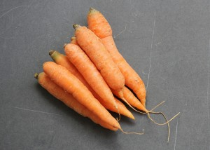 Carrot photo from Small Farm Central