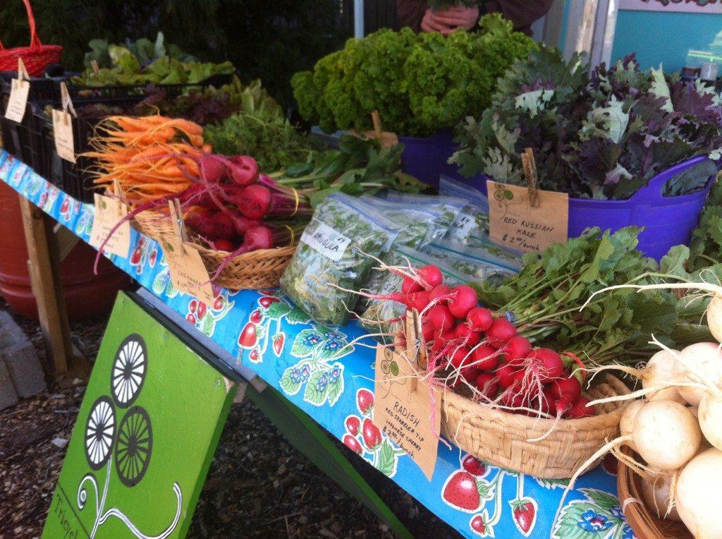 Tricycle Gardens Four Season Market