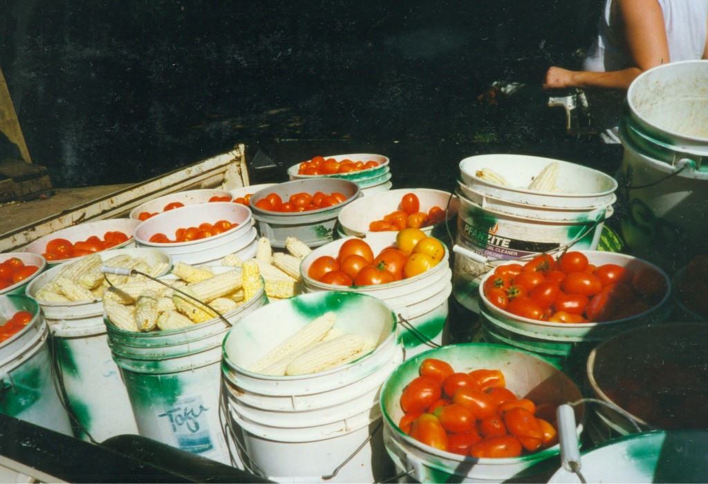 Buckets of tomatoes and corn