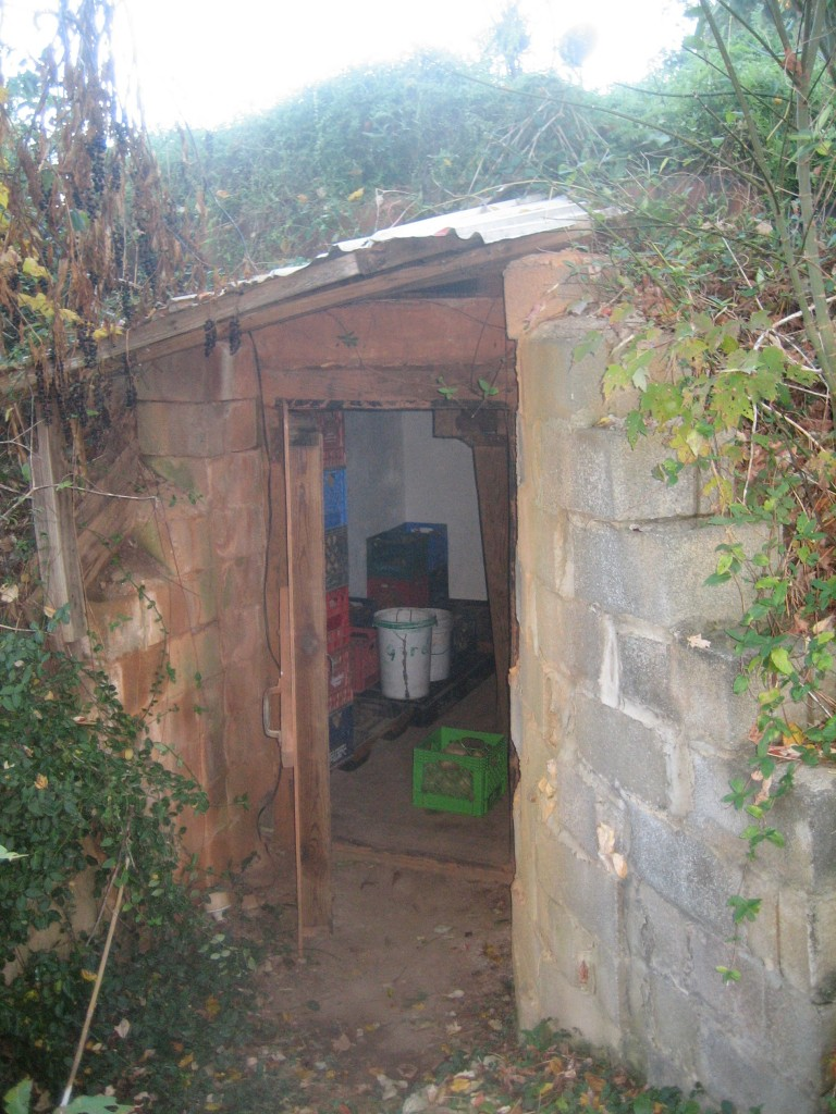 Our root cellar for potatoes. Photo McCune Porter