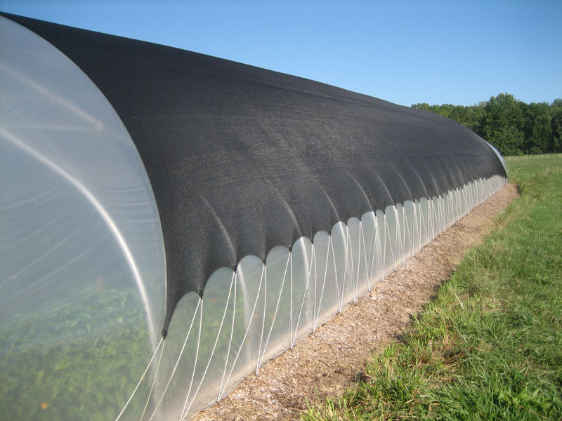 We cover our hoophouse from mid-May to mid-September with shadecloth. Photo Kathryn Simmons