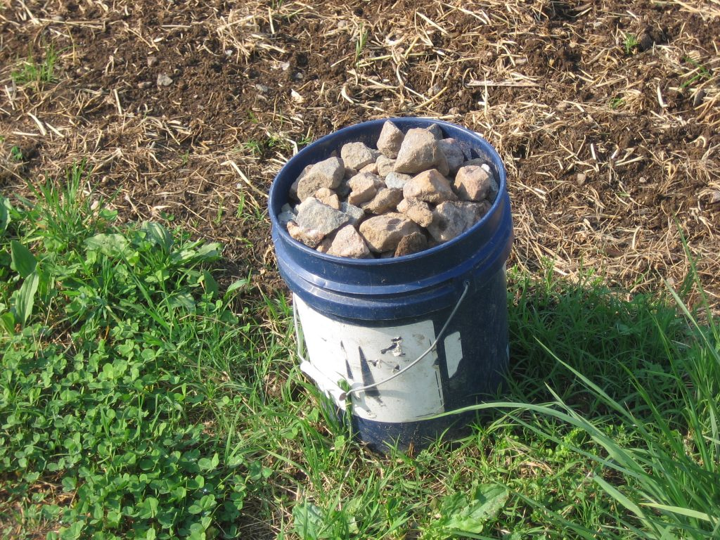 Rocks are one of our biggest harvest. Photo by Kathryn Simmons